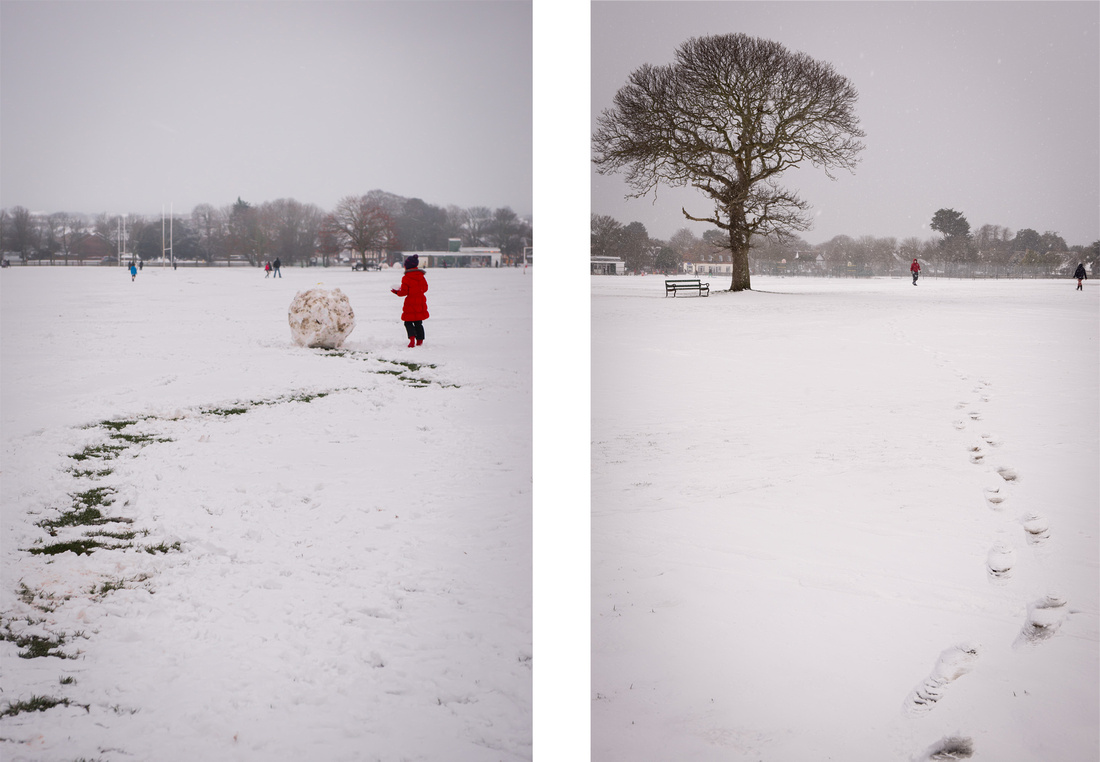 Snowy scenes in Buckingham Park, Shoreham-by-Sea, West Sussex.  Photos by Jenny Rutterford