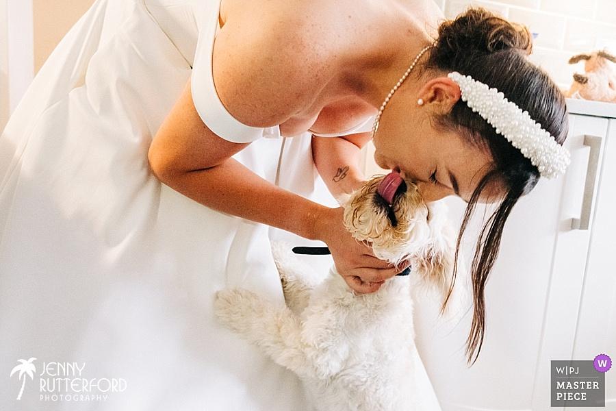Bride kisses dog WPJA Award