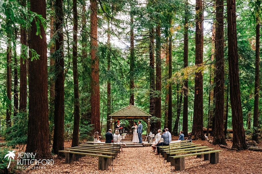 Wedding at Two Woods Estate in West Sussex